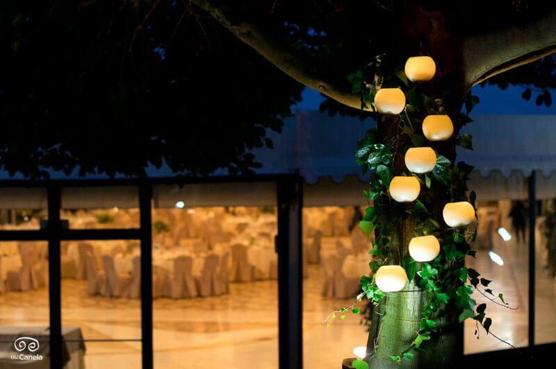 Velones iluminacion en arbol